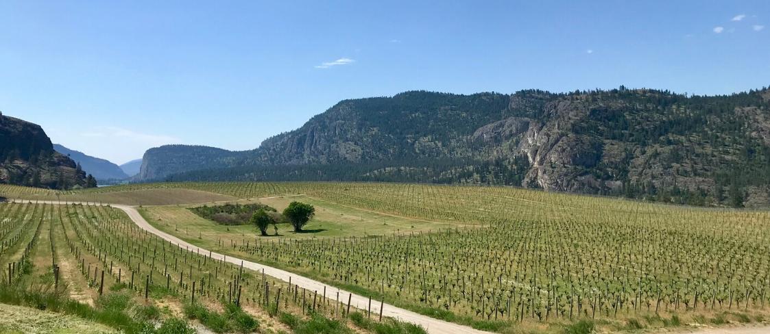 A view of the Okanagan Valley